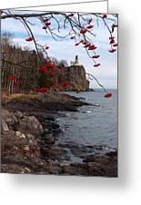 Split Rock Berries Greeting Card