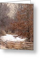Splitrail Winter Greeting Card