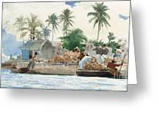 Sponge Fisherman In The Bahama Greeting Card by Winslow Homer