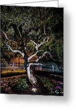 Spooky Tree Greeting Card