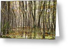 Spooky Woods Greeting Card