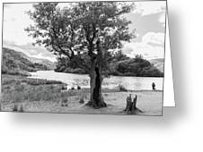 Spot The Woman And Her Dog- Behind The Tree Greeting Card