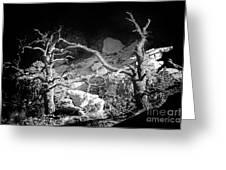 Spotlight On The Rim Greeting Card