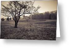 Spotsylvania Battlefield Greeting Card