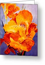 Spotted Canna Greeting Card