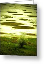 Spotted Lake Greeting Card