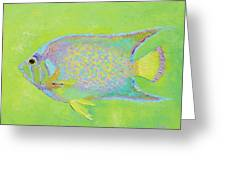 Spotted Tropical Fish Greeting Card