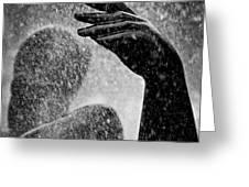 Spray Greeting Card