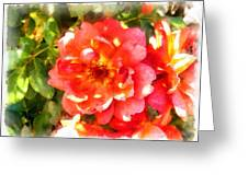 Spread Petals Of A Red Rose Greeting Card