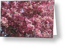 Spring 15 Greeting Card