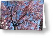 Spring 4 Greeting Card