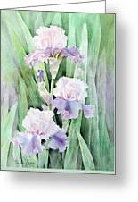 Spring Abounds Greeting Card by Bobbi Price