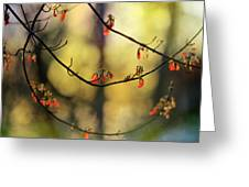 Spring Abstract Greeting Card
