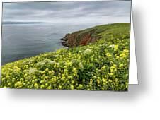 Spring At Chimney Rock Greeting Card