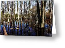 Spring At The Pond Greeting Card
