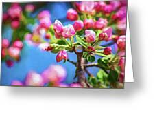 Spring Awakening 2 - Paint Greeting Card
