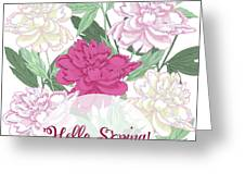 Spring  Background With White And Pink Peony Greeting Card