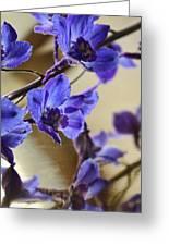 Spring Blooms Greeting Card