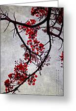 Spring Bloosom In Maldives. Flamboyant Tree II. Japanese Style Greeting Card