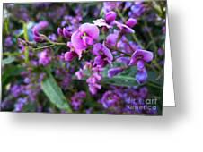 Spring Blossom 2 Greeting Card