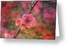 Spring Blossoms 9129 Idp_2 Greeting Card