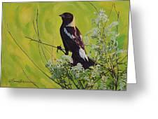 Spring Bobolink Greeting Card