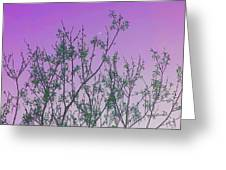 Spring Branches Lavender Greeting Card