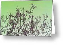 Spring Branches Mint Greeting Card