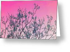 Spring Branches Rose Greeting Card
