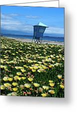 Spring Break Santa Barbara Greeting Card by Kathy Yates