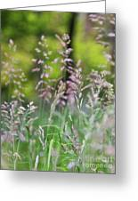 Spring Breeze 4 Greeting Card