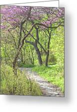 Spring Canopy Greeting Card