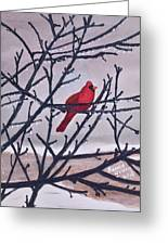 Spring Cardinal Greeting Card