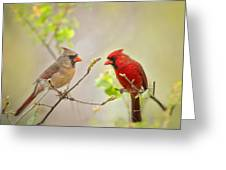Spring Cardinals Greeting Card by Bonnie Barry