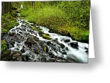 Spring Cascades Greeting Card by Mike  Dawson