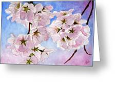 Spring- Cherry Blossom Greeting Card