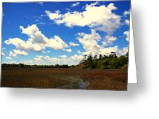 Spring Clouds Over The Marsh Greeting Card