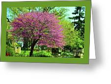 Spring Contrasts At Joslyn Castle Omaha Greeting Card