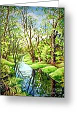 Spring Creek Greeting Card