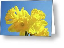 Spring Daffodils Flowers Garden Blue Sky Baslee Troutman Greeting Card