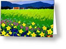 Spring Daffs Ireland Greeting Card