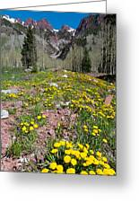 Spring Dandelion And Mountain Landscape Greeting Card