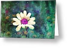 Spring Daydreams Greeting Card
