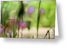 Spring Dreams Abstract Greeting Card
