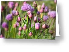 Spring Dreams Greeting Card