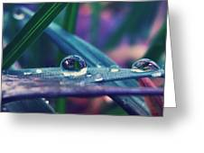 Spring Droplet Greeting Card