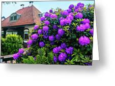 Spring  Dutch Garden  Greeting Card