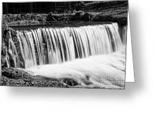 Spring Falls At Hodgson Grayscale Greeting Card
