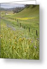 Spring Fenceline Fantasy Greeting Card