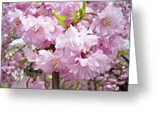 Spring Flowering Trees Art Prints Pink Flower Blossoms Baslee Greeting Card